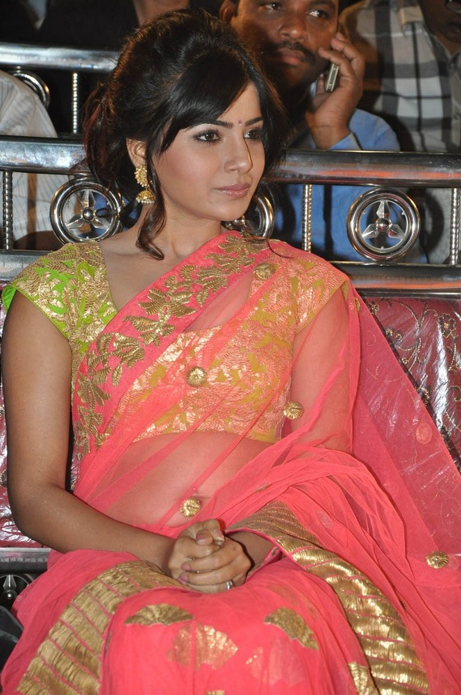Samantha's Guest Role In Siddarth's Film Samantha playing a Guest Role in Hero Siddarth Film