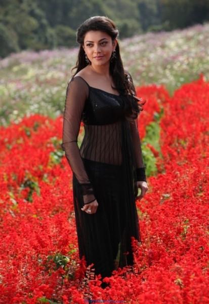 Kajal Aggarwal Latest Photos from Jilla Movie